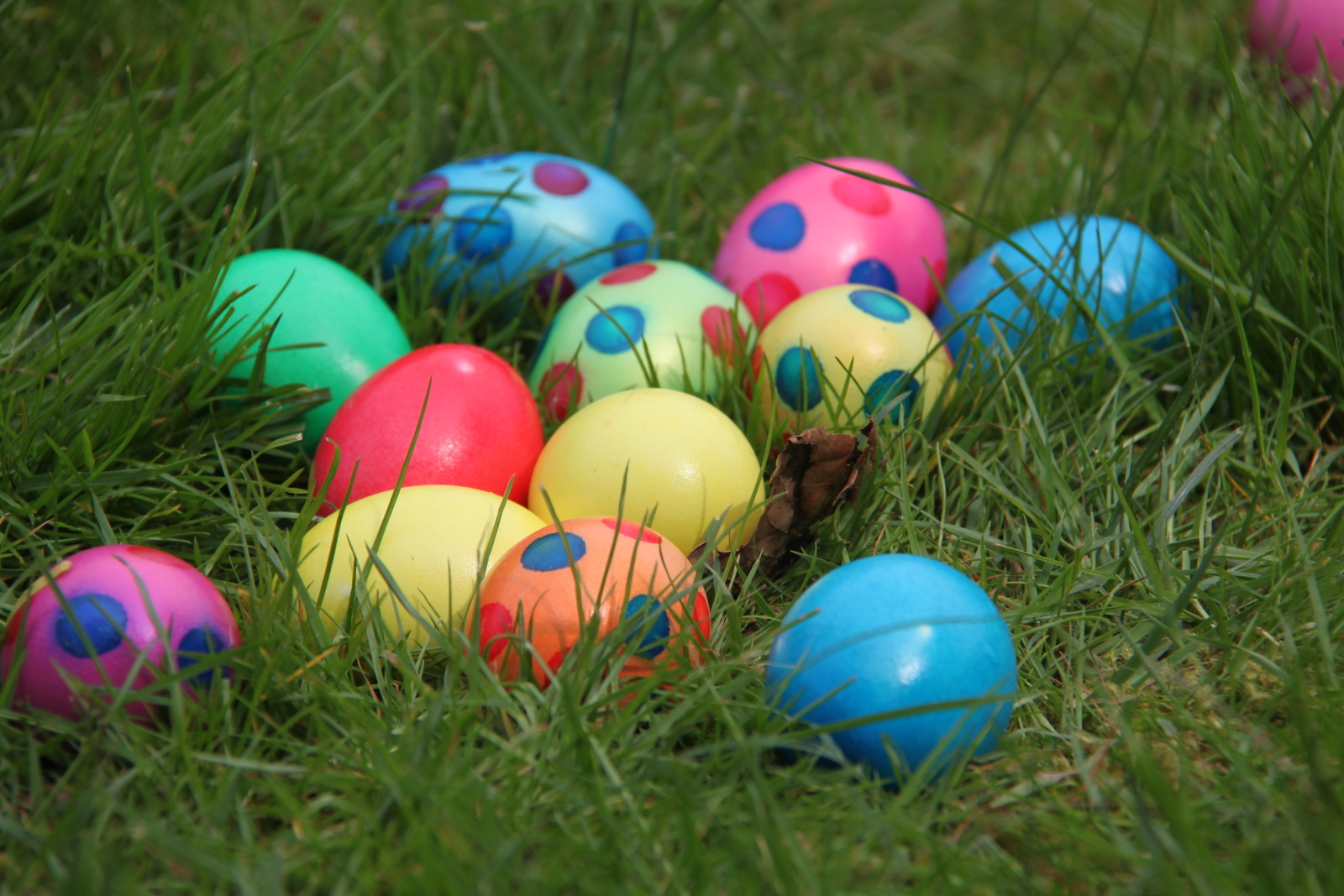 Easter and the Start of Spring