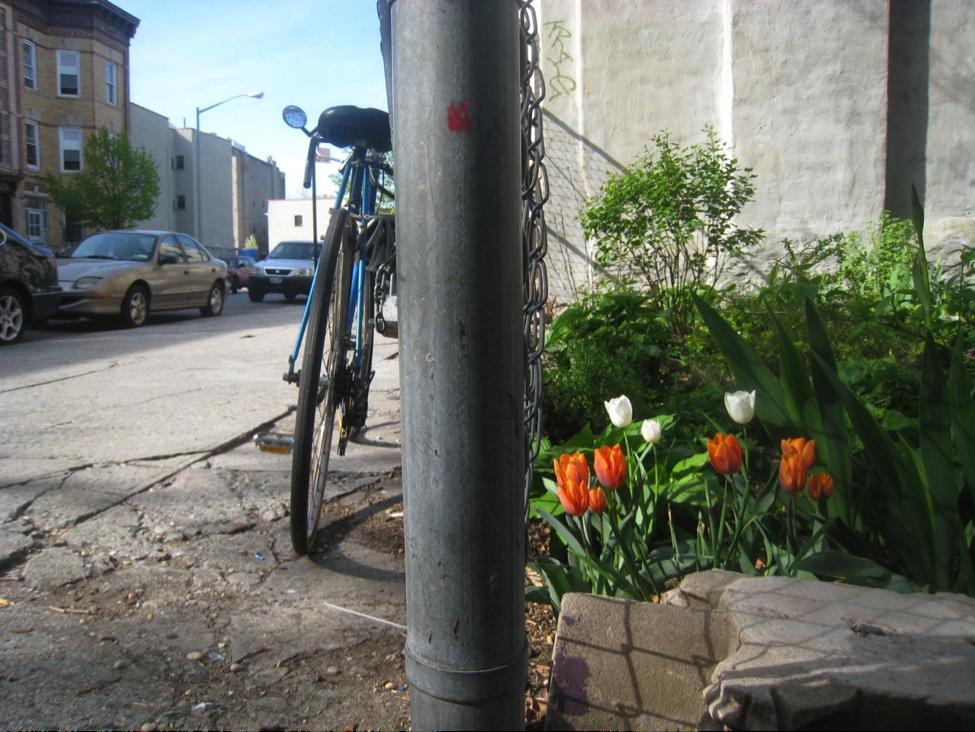 Bike_Plant