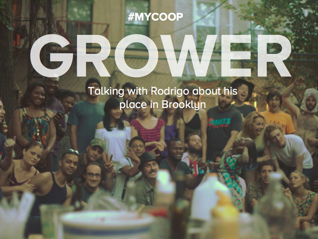MYCOOP STORIES: Grower